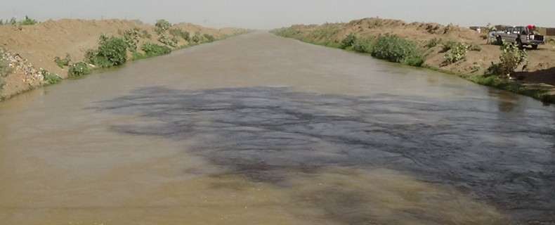 Consultative workshop on : Gezira Irrigation water management 21-26 February, 2016