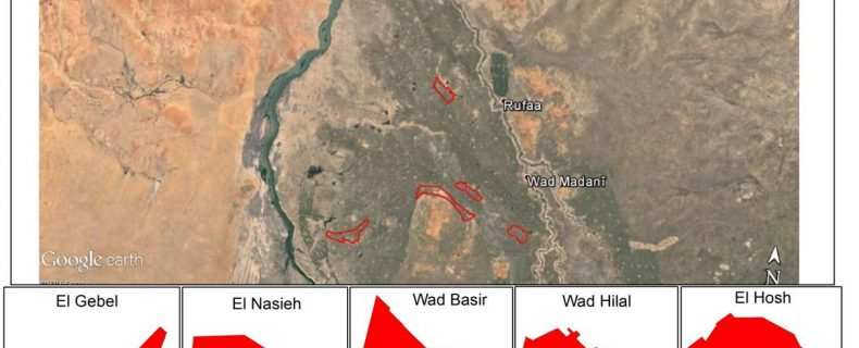 Mapping of Cropped Area in Gezira Irrigation Scheme