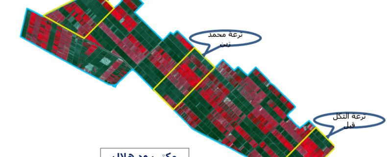 Mapping of Cropped Areas in Gezira Irrigation Scheme Using Remote Sensing and GIS techniques